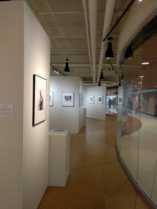 Art gallery with white walls and a large glass wall with various black and white framed photos.